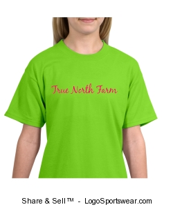 TNF Lime T - youth Design Zoom